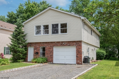 Summit Single Family Home For Sale: 22 Plain St