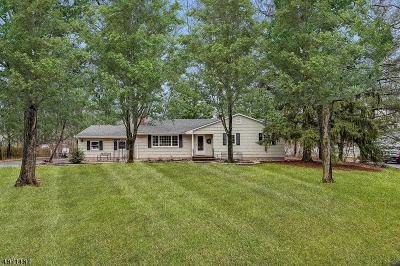 Montgomery Twp. Single Family Home For Sale: 62 Johnson Dr