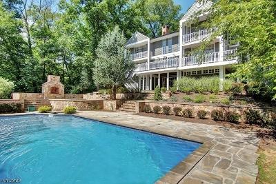 Bernards Twp., Bernardsville Boro Single Family Home For Sale: 136-1 Mt Harmony Rd