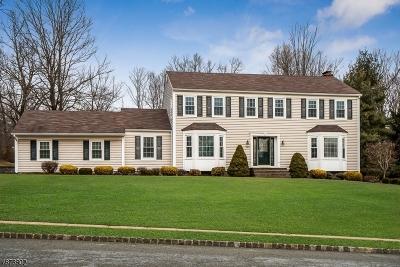 Bernards Twp., Bernardsville Boro Single Family Home For Sale: 133 Berkeley Cir