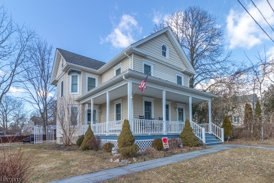 Clinton Twp. Single Family Home For Sale: 43 Center Street