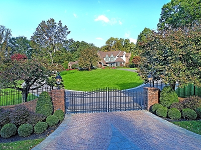 Mendham Boro, Mendham Twp. Single Family Home For Sale: 12 Carriage Hill Dr