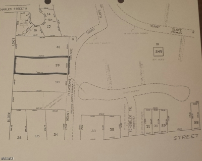 Bridgewater Twp. Residential Lots & Land For Sale: 00 Mt Pleasant Ave