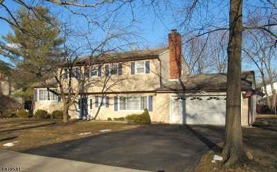 Parsippany-Troy Hills Twp. Single Family Home For Sale: 18 Winfield Dr