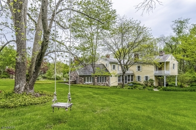 Alexandria Twp. Single Family Home For Sale: 95 Mt Salem Rd