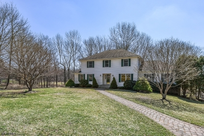 Mount Olive Twp. Single Family Home For Sale: 24 Cedar Manor Ct