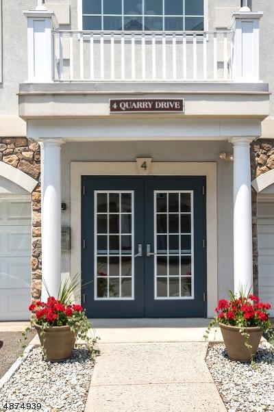 Woodland Park Condo/Townhouse For Sale: 4 Quarry Dr C1