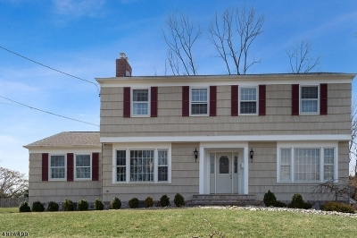 Westfield Town Single Family Home For Sale: 16 Marlin Ct