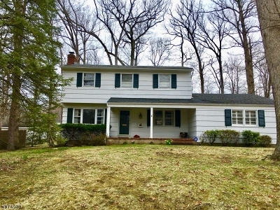 Berkeley Heights Single Family Home For Sale: 118 Lawrence Dr