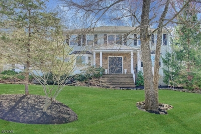 Montville Twp. Single Family Home For Sale: 13 Weiss Dr