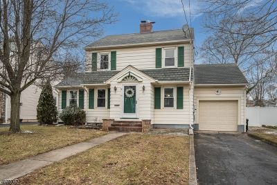 Somerville Boro Single Family Home For Sale: 25 E Young St
