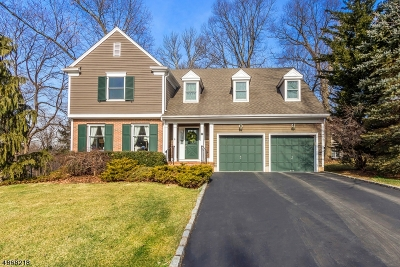 Somerset County Single Family Home For Sale: 199 6th St
