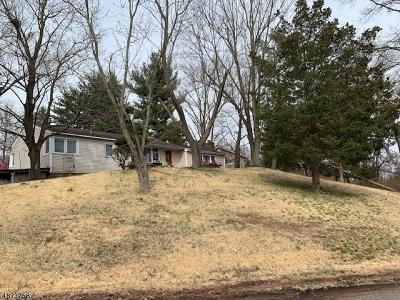 Branchburg Twp. Single Family Home For Sale: 4 Logan Drive
