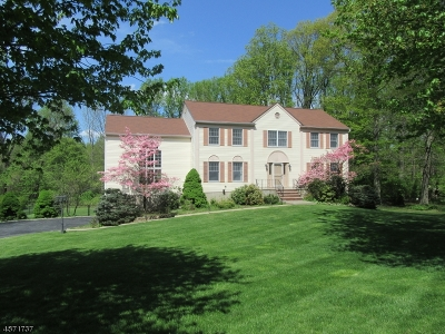 Randolph Twp. Single Family Home For Sale: 27 Leigh Ct