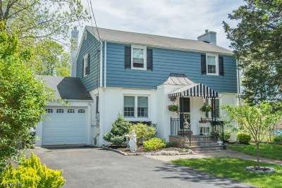 Denville Twp. Single Family Home For Sale: 8 3rd Avenue