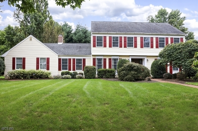 Montgomery Twp. Single Family Home For Sale: 55 Richmond Dr
