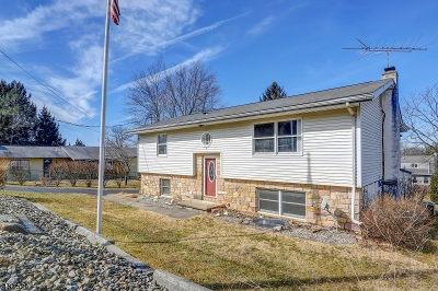 Hunterdon County Single Family Home For Sale: 12 Douglas St
