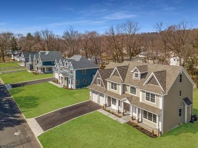 Mountainside Boro Single Family Home For Sale: 1256 Virginia Ave