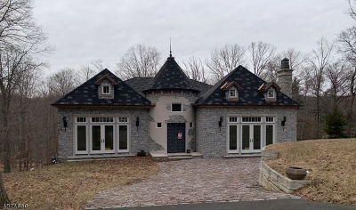 Watchung Boro NJ Single Family Home For Sale: $900,000