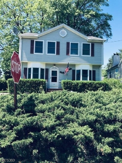 Edison Twp. Single Family Home For Sale: 176 Stony Rd