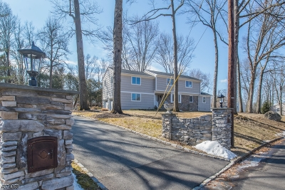 Roseland Boro Single Family Home For Sale: 9 Wingate Way
