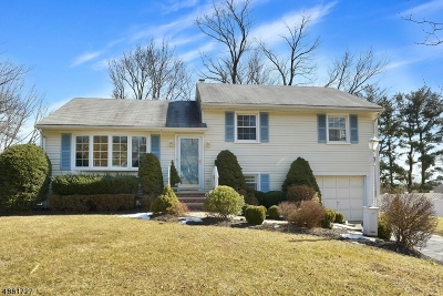 Morris Twp., Morristown Town Single Family Home For Sale: 3 Marianna Pl
