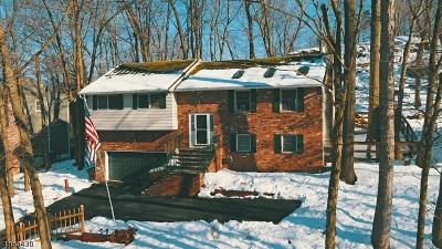 Byram Twp. Single Family Home For Sale: 746 W Shore Trl