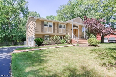 Montville Twp. Single Family Home For Sale: 5 Brittany Rd