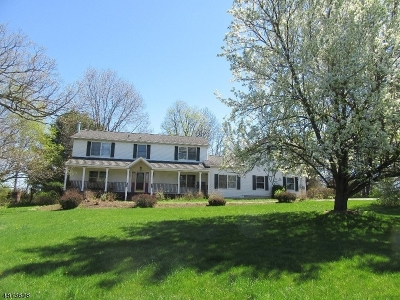 Lafayette Twp. Single Family Home For Sale: 236 Warbasse Jct Rd