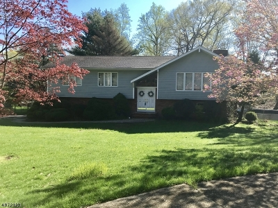 Montville Twp. Single Family Home For Sale: 15 Jean Drive