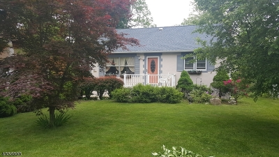 Byram Twp. Single Family Home For Sale: 13 Broad Ave