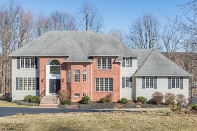 Randolph Twp. Single Family Home For Sale: 25 Barbara Drive