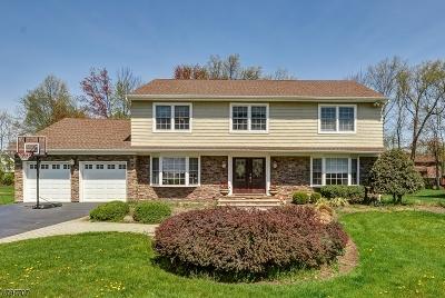 East Hanover Twp. NJ Single Family Home For Sale: $780,000