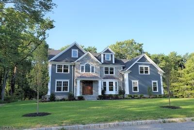 Florham Park Boro Single Family Home For Sale: 14 Elm Street