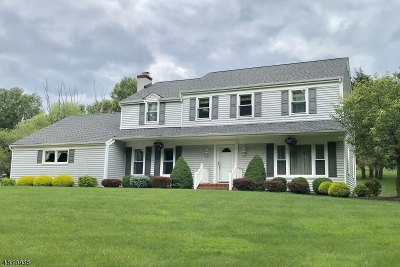 Branchburg Twp. Single Family Home For Sale: 28 Stony Brook Rd