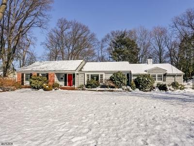 Florham Park Boro Single Family Home For Sale: 25 Village Rd