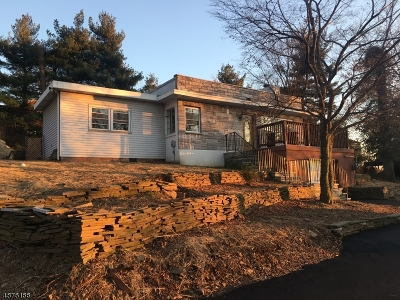 Woodland Park Single Family Home For Sale: 901 Rifle Camp Rd
