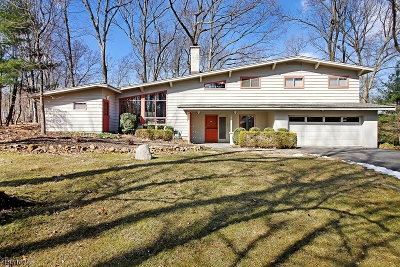 Bridgewater Twp. Single Family Home For Sale: 1185 Sherlin Dr