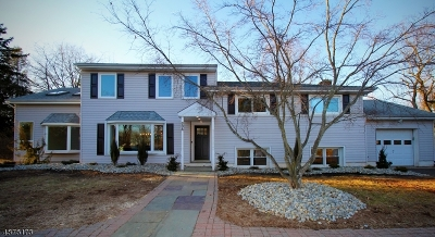 Montgomery Twp. Single Family Home For Sale: 834 Millstone River Rd