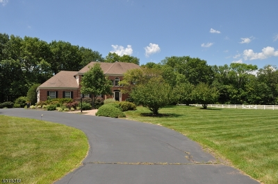 Montgomery Twp. Single Family Home For Sale: 406 County Road 601