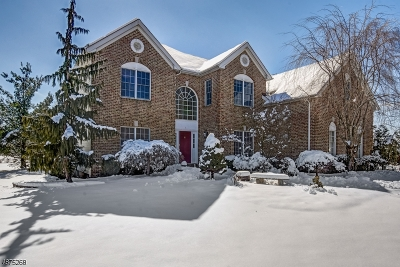 Franklin Twp. Single Family Home For Sale: 1 Surry Ln
