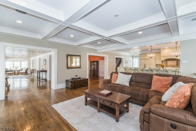 Mountain Lakes Boro Single Family Home For Sale: 166 Laurel Hill Rd