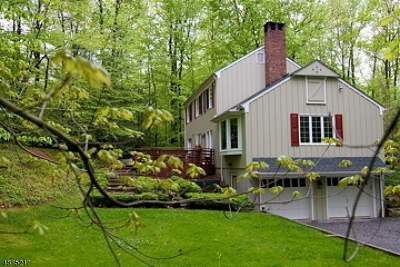 Hunterdon County Single Family Home For Sale: 18 Water St