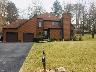 Hunterdon County Single Family Home For Sale: 8 McIntosh Ln