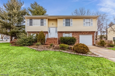 Edison Twp. Single Family Home For Sale: 2 E Waverly Dr