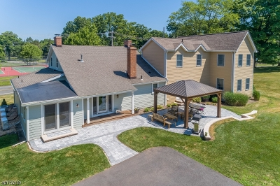 Bernards Twp., Bernardsville Boro Single Family Home For Sale: 90 Church St