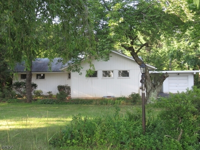 Montgomery Twp. Single Family Home For Sale: 914 Route 518