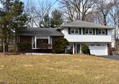 Montville Twp. NJ Single Family Home For Sale: $515,000