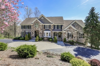 Chester Twp. NJ Single Family Home For Sale: $1,149,000