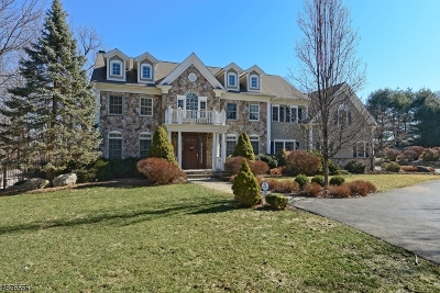 Tewksbury Twp. Single Family Home For Sale: 19 Old Mine Rd